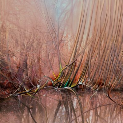 "Peisaj pictat pe pânză. ""Malul stâng II"" © by Radu Maier"